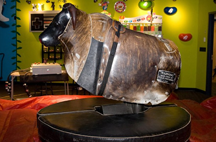 PBR mechanical bull